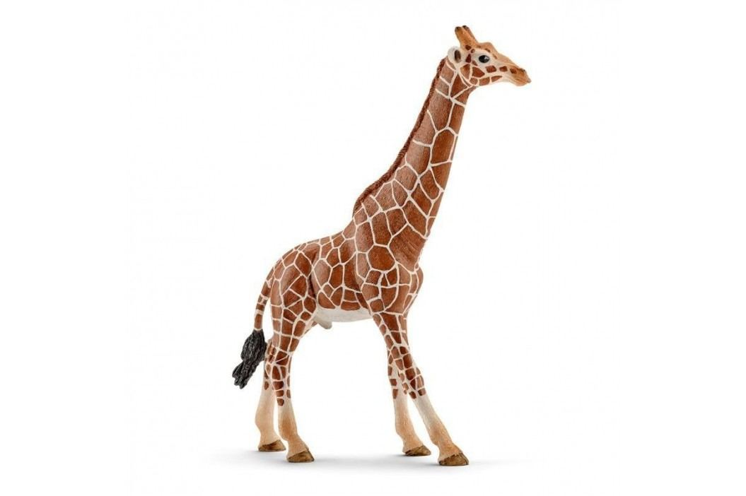 Schleich Zvířátko - samec žirafy