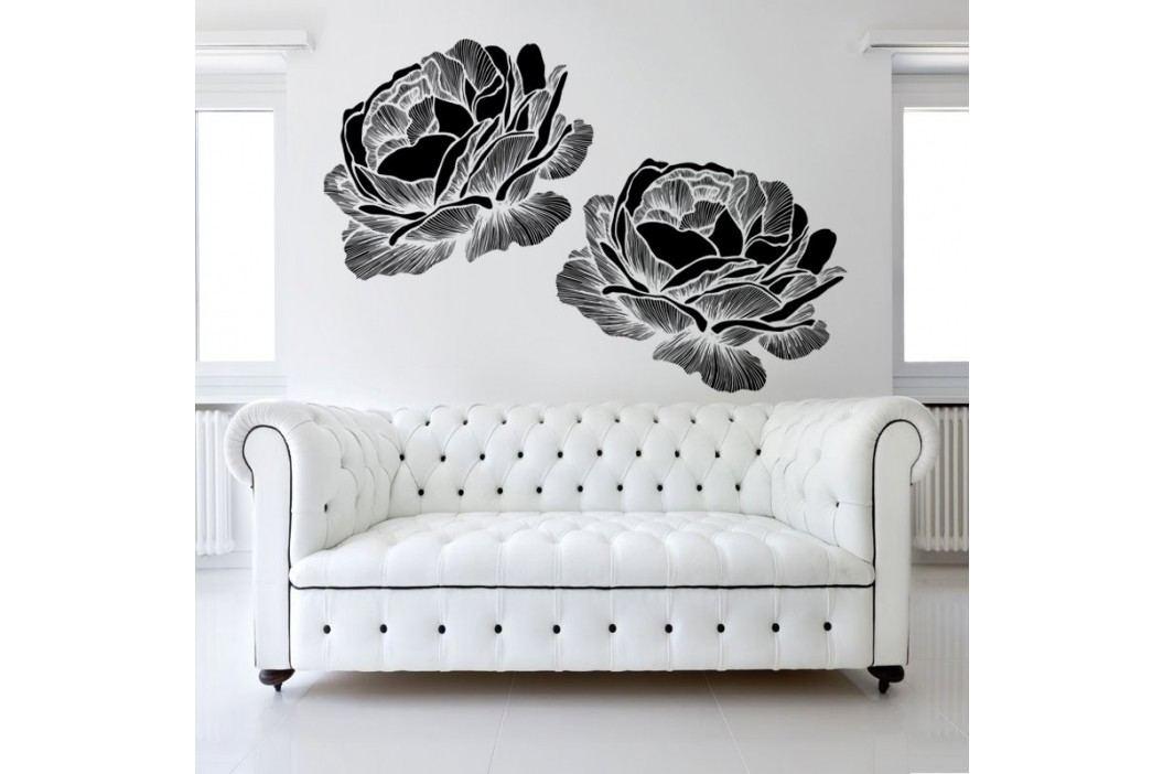 Housedecor Samolepka na zeď Black roses 120x90 cm