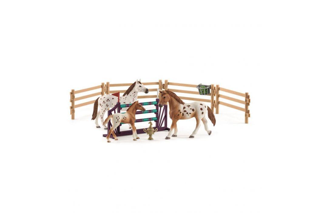 Alltoys Set appalosští koně a tréninkové příslušenstí