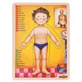 WOODY Puzzle - lidské tělo