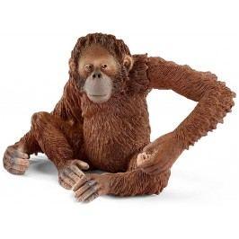 Schleich Orangutan samice 14775