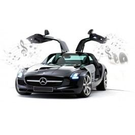 Carrera Auto Mercedes-Benz SLS AMG (iPhone,iPad)