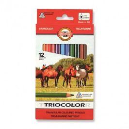 Koh-i-noor Triocolor 9